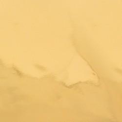 Foil con attivazione a caldo per Gopress - Oro Lucido